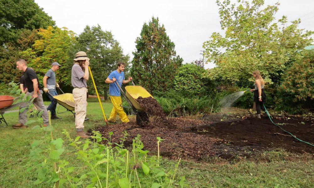 Espace en permaculture comestible : Cet espace laboratoire sert à la mise en pratique des principes de permaculture dans la construction du sol et l'établissement de cultures comestibles et pérennes.